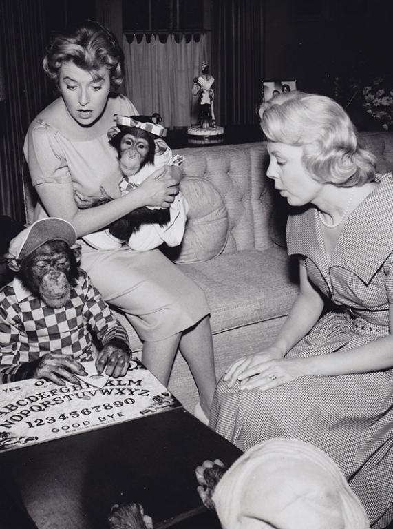 1961 The Hathaways ouija board Chimp